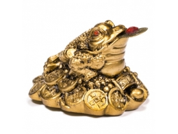 Feng Shui - väike kuldne rahakonn - VIIMANE